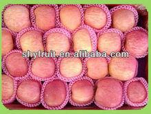 2014 chinese fresh high quality new season apple