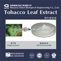 استخراج أوراق التبغ