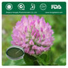 Factory Supply Wild,Natural Red Clover Herb Extract