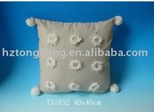 Fashionable Sofa Cushions