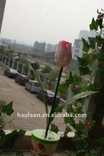 tulip solar flower light HS-GA604