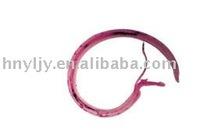 laboratory apparatus prepared microscope slide/Sexual mosaic of Schistosoma japonicum W.M.