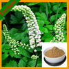 2.5% Triterpene Glycosides Herbal Plant Extract Black Cohosh Extract