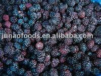 Chinese Blackberry
