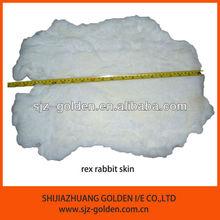 rex rabbit skin