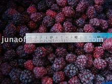 Chinese Blackberry frozen