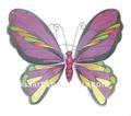 colorido 2012 alas de ángel para los niños