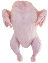 Halal Fresh & Frozen Whole Chicken with and Without Giblets