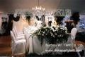 Hochzeitsfest-Zelt