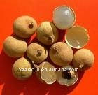High Quality Dried Longan extract 10:1