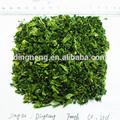 el brócoli deshidratado de brócoli 2014 de cultivos de plantas de base