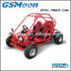 EEC EPA Approved 260cc Go Kart with water cooled 4 stroke engine