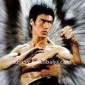 Étoile chinoise Bruce Lee de kung-fu