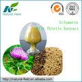 Mariendistel pflanzenextrakt( silymarin) dab10 usp34 der professionelle herstellung