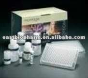 Chlamydia Test Cassette