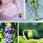 Plant rooting growth hormones IBA-K 98%