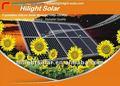 Austrália padrão painel solar 200 w de alta qualidade fotovoltaica telhado