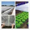 Biodegradable fabric nonwoven for agricultural
