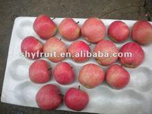 helmet fabric organic red star apple fruit