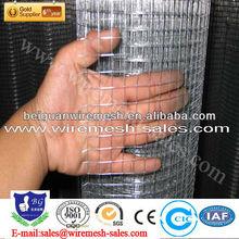 high quality 2x2 Sri Lanka Galvanized Welded Wire Mesh