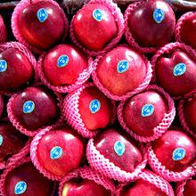 Big red huaniu apple size100,113,125