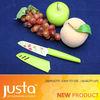 fruit knife utility knife with sheath