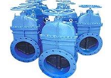 BW616 stem gate valve