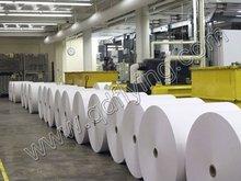 wood pulp filter paper in rolls