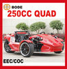 3 WHEEL 250CC ATV QUAD(MC-369)