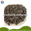 909 semente de girassol preço de mercado, tipo redondo, lista de produtos agrícolas