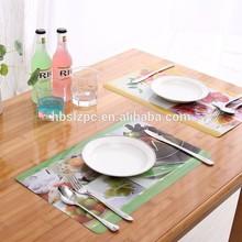 Modern Coffee Plastic Table mats/Flower Western Pad/Waterproof pad