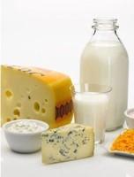 vegetable fat milk powder/cfudges, yogurt, chocolate, coffee and tea whitener