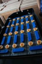 48V 625AH traction battery