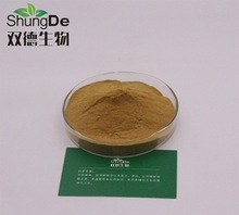 Spot supply Echinacea polyphenols Natural echinacea extract