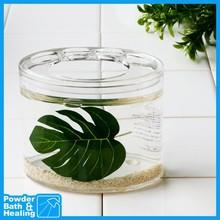 TROPICAL LEAVES float creative designer family toothbrush holder