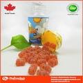 atacado suplemento alimentar urso gummy vitaminas