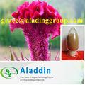 кокскомб цветок p. электронной.( 10:1 5:1) со нежности и заботы