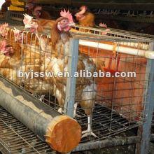 Galvanized Metal Chicken Cage For Breeding Chicken