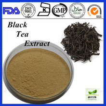 High Quality Water Soluble Black Tea P.E
