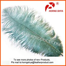 colored ostrich feathers