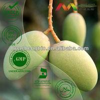 High Quality Irvingia Gabonensis Seed Extract Powder