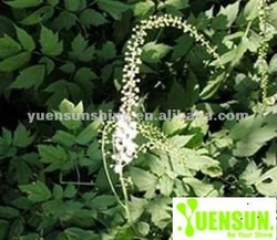 100% natural Black Cohosh Extract - Triterpene glycosides > 2.5% by HPLC