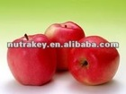 apple fruit extract/apple polyphenol /Phloretin & Phloridzin