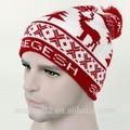 Tasarım Kendi kış şapkalar bn-0128