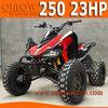 4 Valves 250cc ATV Quad Bike