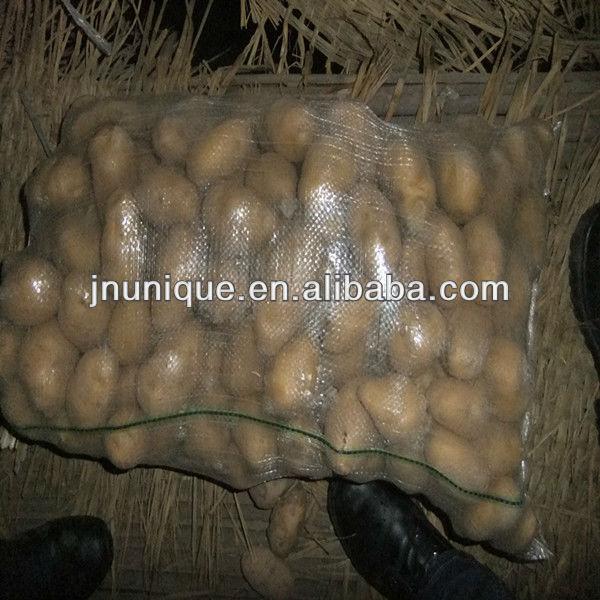 hot sale fresh holland potato made in china