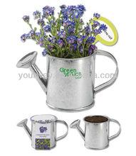 herb garden for mini watering pot