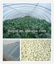 Agricultural plastic tunnel film anti uv /antioxident/ light stabilizer /anti fog masterbatch