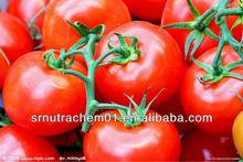 High Quality 100% Natural Tomato Lycopene