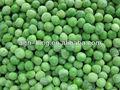 guisantes congelados verde